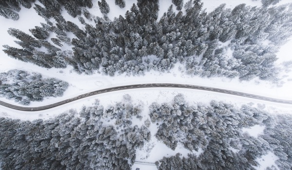 A mountain road winding between snowed-over trees.